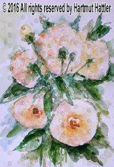 0029_Blumen.jpg