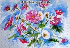0041_Blumen.jpg