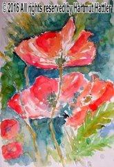 0058_Blumen.jpg