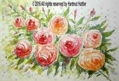 0152_Blumen.jpg