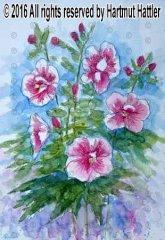 0171_Blumen.jpg