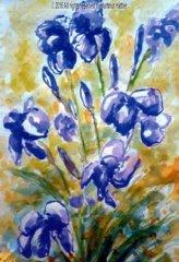 0177_Blumen.jpg